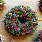 Piros-kék terméses  téli koszorú