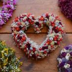 Sóvirág szív piros virágokkal