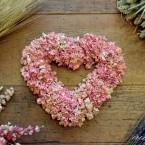 Rózsaszín szarkaláb szív