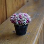 Színes tavaszi asztaldísz bádogedényben