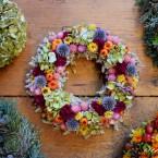 Őszi színes sóvirág koszorú