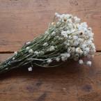 Rózsaszín szarkaláb-vadsóska koszorú